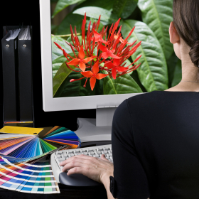 http://www.dreamstime.com/royalty-free-stock-image-designer-work-image4176436